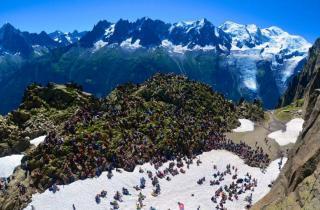 Où se cachent les plus beaux festivals d'été en France ?