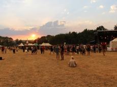 Chien à Plumes, Festival Interceltique, Reggae Sun Ska...