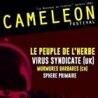 Festival Cameleon