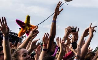 Festival des Vieilles Charrues : épique odyssée bretonne