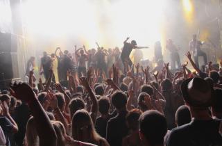 Le Chien à Plumes : un festival vraiment au poil