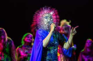 We Love Green 2018 : Björk en première tête d'affiche