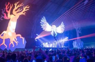 D'Avignon à Toulouse : l'Insane Festival déménage pour 2017